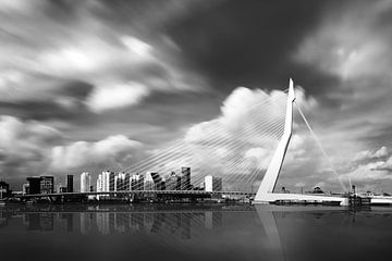 Rotterdam Erasmus van Martijn Kort