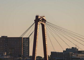 De Willemsbrug van Danny Koring