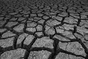 de droogte van Dirk Vervoort