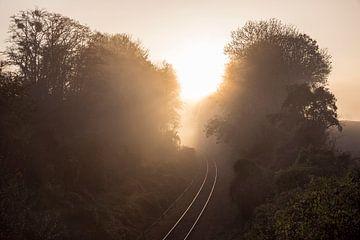 Reise ins Licht... von Rob Boon