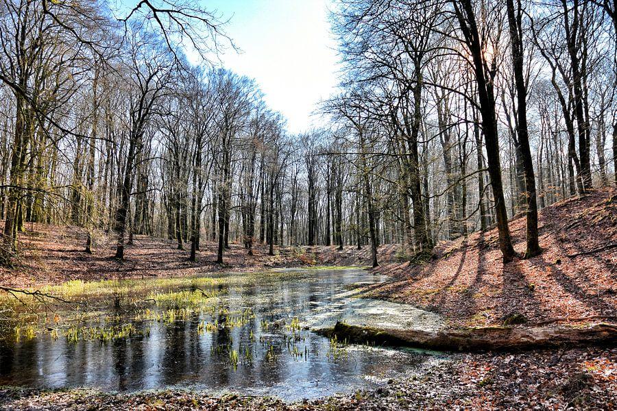 Het Solse Gat - Winter zon en kleuren van Ernst van Voorst