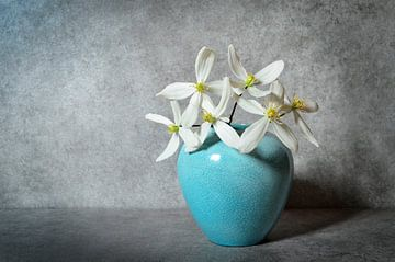 Stilleben mit Clematisblüten von Corinne Welp