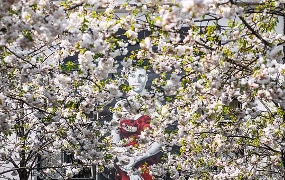 Kijkend door de bloesem in Utrecht