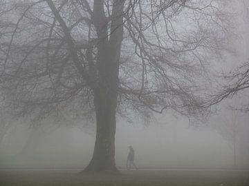Nebel 06 von Ilona Picha-Höberth