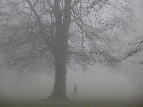 Nebel 06 von