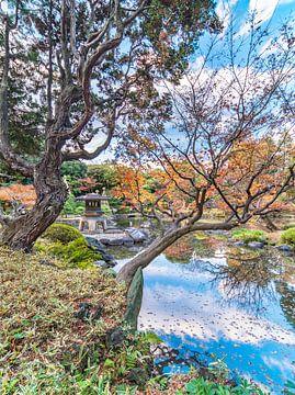 Japanische Laternen und Kiefern im Herbst. von Kuremo Kuremo