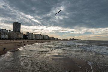 Das Meer in Ostende von Werner Lerooy