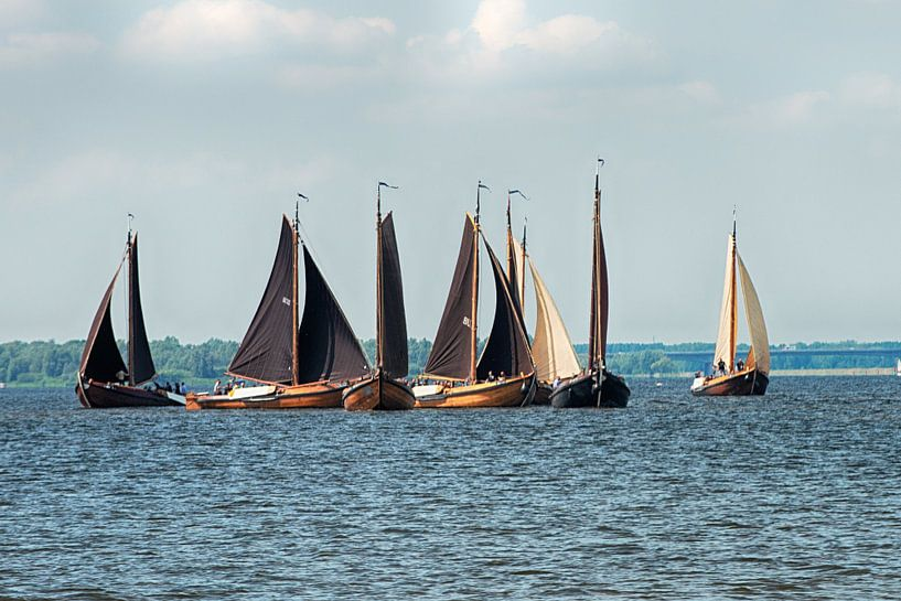 Botters op het Eemmeer. van Brian Morgan