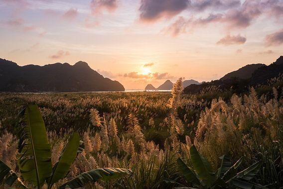 Paarse zonsondergang op het eiland Cát Bà - Ha Long Bay, Vietnam van Thijs van den Broek