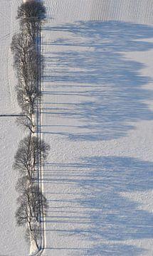 Winterland von Pieter Veninga