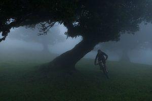 Mountainbiken op Madeira van Frank Peters