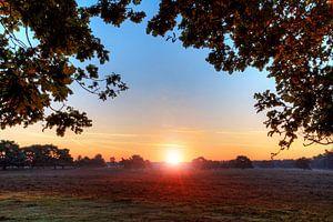 Veluwe zonsopkomst van