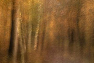 Atmosphère d'automne sur Lia Hulsbeek Brinkman