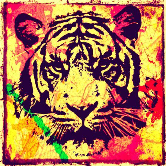 Tiger - Splash Pop Art PUR - 3 Colours - Part 1 van Felix von Altersheim