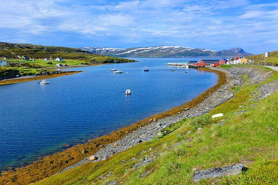 Gezicht op Repvåg - dorp aan de fjord