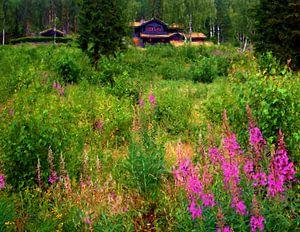 Landhuis in Noorwegen