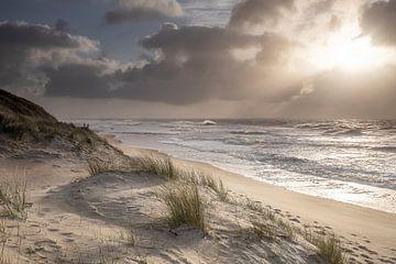 Schönes Sonnenlicht über der Nordseeküste, Holland von Olha Rohulya