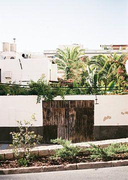 Botanischer Hinterhof in Ibiza Spanien von Raisa Zwart