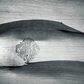 Einsam? van Anke Brehm
