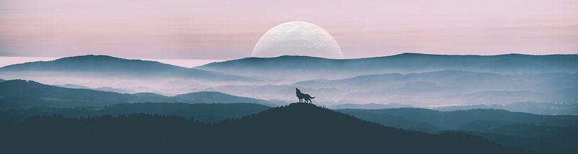 Loup hurlant sur Alexander Dorn