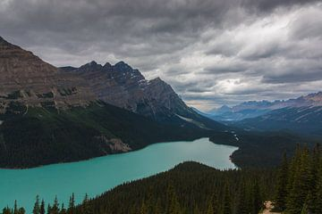 Peyto Lake Banff NP sur Ilya Korzelius