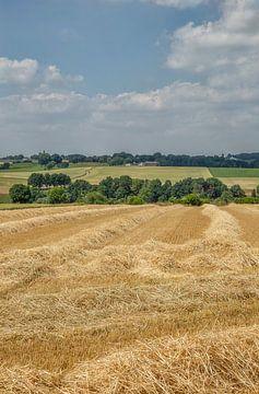 Velden met stro in Zuid-Limburg van John Kreukniet