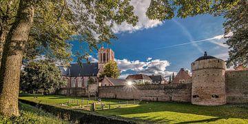 Blick auf die Stadtmauer und die Kirche der Elburg in Gelderland von Harrie Muis