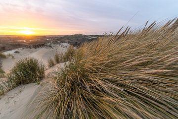 Hollandse duinen von Dirk van Egmond