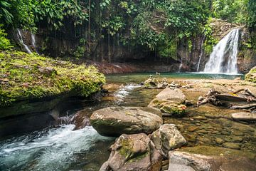Waterval Guadeloupe, Frankrijk van Peter Schickert