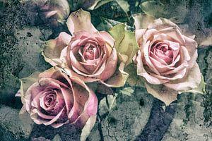 rozen in pastel van Eugene Winthagen