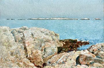 Childe Hassam, Duck Island, 1906 van Atelier Liesjes