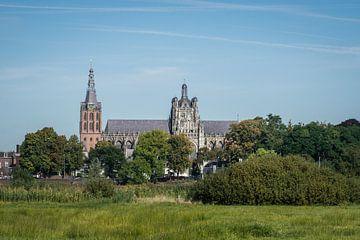 Sint Jan Kathedraal in Den Bosch, vanaf een afstand