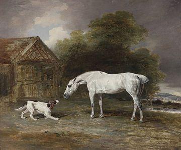 Der Hund und das Pferd, Ben Marshall von Atelier Liesjes