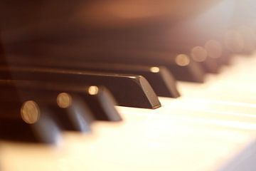 Gros plan d'un piano sur Udo Herrmann