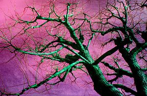 Grüner Baum
