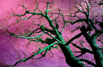 Grüner Baum von Rosi Lorz