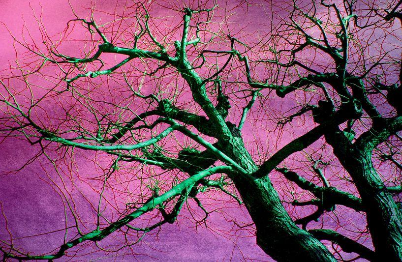 Grüner Baum van Rosi Lorz
