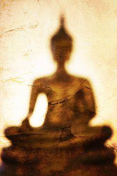 De schaduw van Boeddha