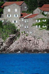 ideaal huis bedekt met klimop stijgt boven het blauwe water uit. kleine huisjes met een pannendak en