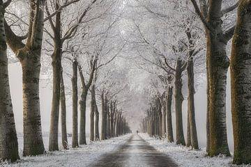 Winterwanderung von Lars van de Goor