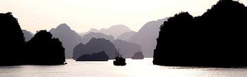 Lagen - Ha Long Bay van Nico van der Vorm