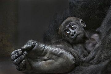 Bigfoots Baby van Joachim G. Pinkawa