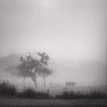 Silhouets 1 von Arjan Keers