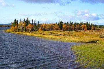 Eiland in de Zweedse archipel van Thomas Zacharias