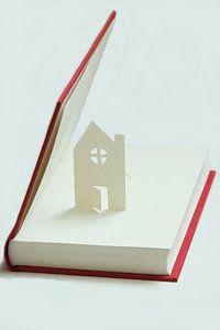 Open deur in een open boek