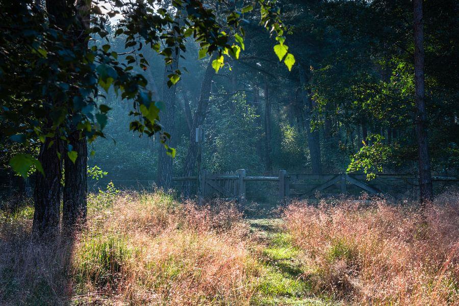 The Gate van William Mevissen
