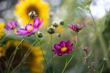Blumen von Monique de Koning