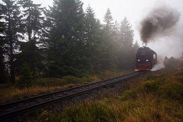 Brockenbahn von Alena Holtz
