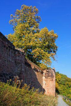 Romantic Castle Ruin of Henneburg van Gisela Scheffbuch