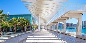 Malaga haven - Palmeral de las Sorpresas van Gerard van de Werken